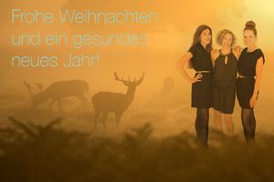 Pausenkicker Newsletter 11 Frohe Weihnachten und ein gesundes neues Jahr